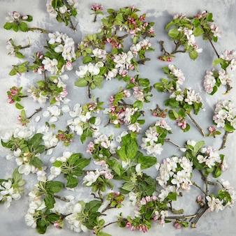 Lentebloemen, plat leggen. appelboomtakken met roze en witte bloemen en groene bladeren op grijze betonnen ondergrond, bovenaanzicht. lente bloesem, florale achtergrond