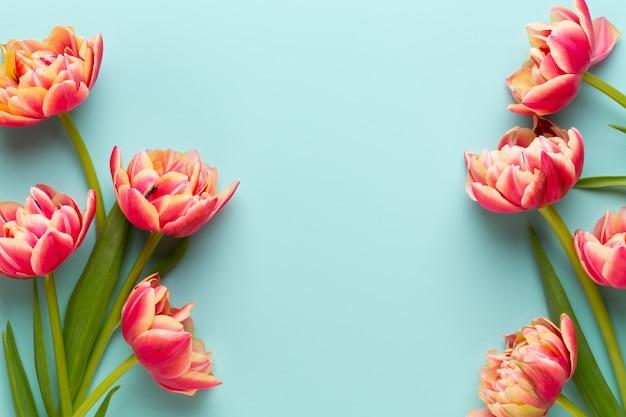 Lentebloemen, tulpen op pastel kleuren achtergrond. retro vintage stijl.