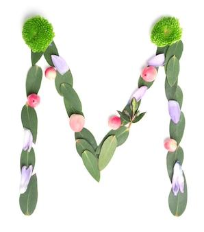Letter m gemaakt van bloemen en kruiden op witte achtergrond