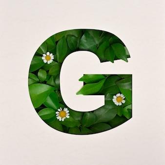 Lettertypeontwerp, abstract alfabet lettertype met bladeren en bloem, realistische bladeren typografie - g.