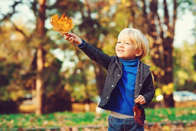 Leuk gaat weinig jongen die met esdoorn spelen in openlucht weg. gelukkig kind dat in de herfstpark loopt. herfstweer.