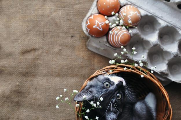 Leuk grijs klein katje in een rieten mand en paaseieren van natuurlijke rode kleur met een grafisch patroon van witte pijn