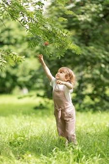 Leuk kind in een sprong om bessen van een boom te plukken