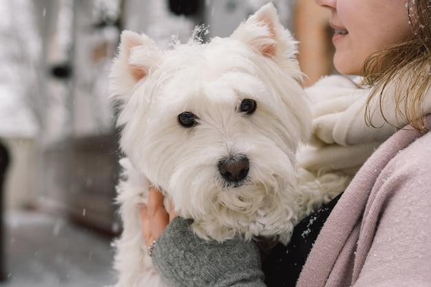 Leuk lachend meisje knuffelen schattige witte hond met grappige leuke emoties. west highland white terriër. aanneming concept.