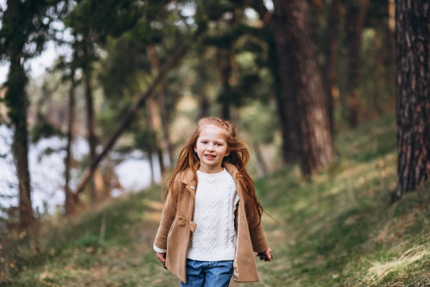 Leuk meisje dat kegels in bos verzamelt