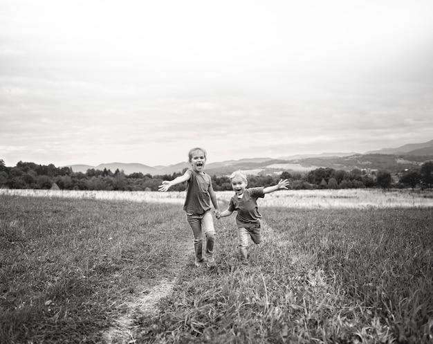 Leuk meisje met haar broer die samen in mooie weide in de bergen loopt