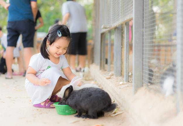 Leuk meisje voedend konijn op het landbouwbedrijf