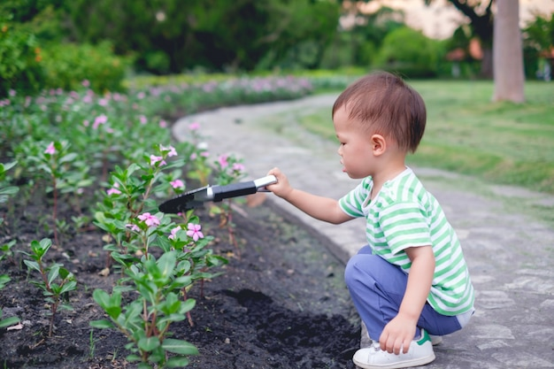 Leuk weinig aziatisch kind die van de peuterjongen jonge boom op zwarte grond in de groene tuin planten bij zonsondergang
