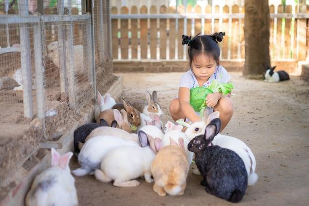 Leuk weinig aziatisch meisjes voedend konijn op het landbouwbedrijf