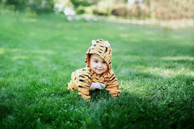Leuke babyjongen die een zitting van het tijgerkostuum in gras draagt bij park.