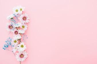 Leuke bloemen op roze achtergrond met ruimte aan de rechterkant