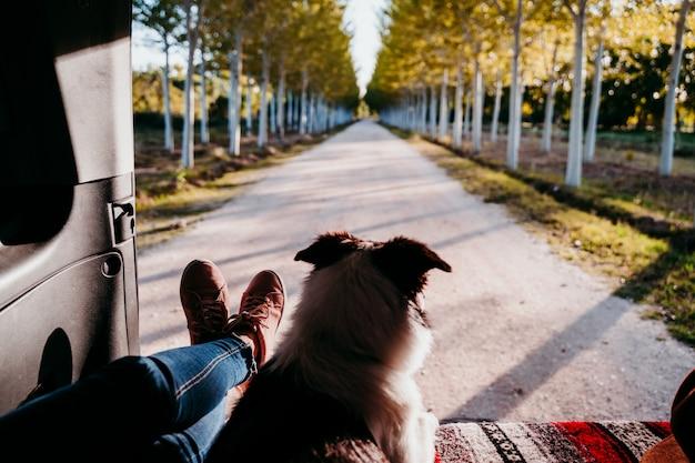Leuke border collie-hond en vrouwenbenen die in een bestelwagen ontspannen. reizen concept.