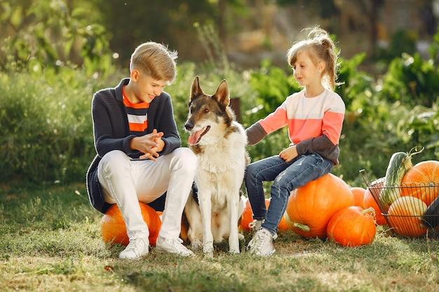 Leuke childresnzitting op een tuin dichtbij vele pompoenen