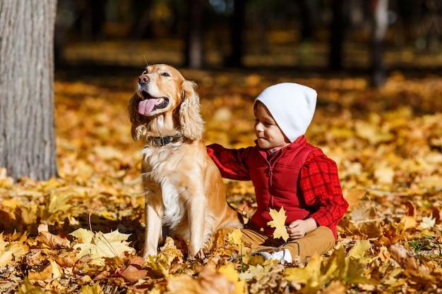 Leuke, gelukkige, blanke jongen in rood shirt glimlachend en spelend met hond onder gele bladeren. klein kind plezier in herfst park. concept van vriendschap tussen kinderen en huisdieren, gelukkige familie