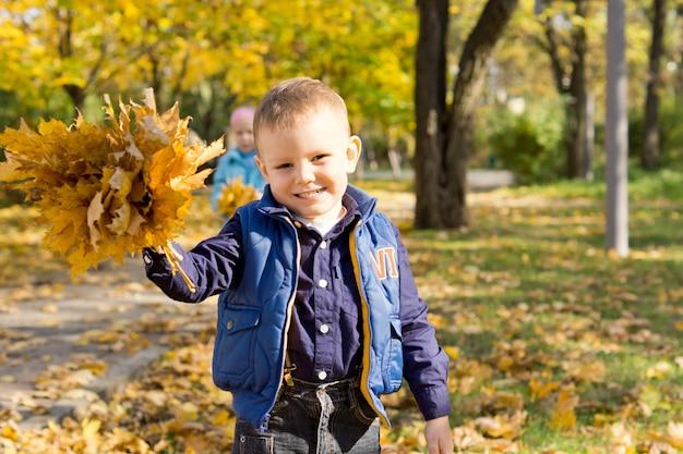 Leuke gelukkige glimlachende kleine jongen die een bos van kleurrijke gele herfstbladeren steunt