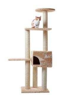 Leuke grappige kat en boom op witte achtergrond