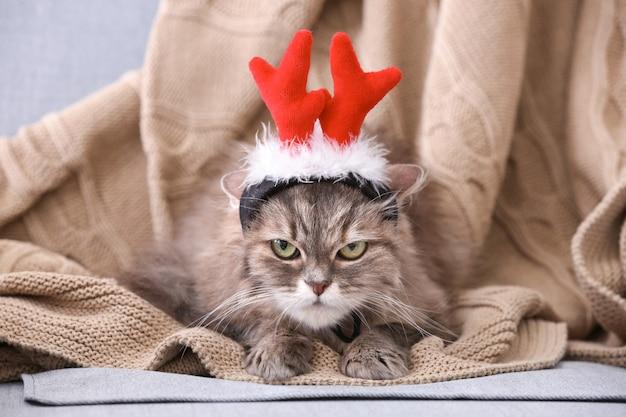Leuke grappige kat met rendiergewei op plaid thuis at