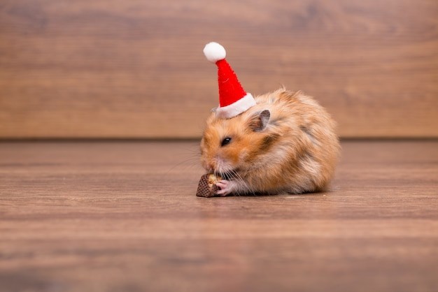Leuke hamster met kerstmuts op de tafel