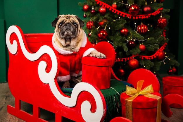 Leuke hond die de plaats van de kerstman in sleight neemt