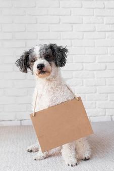 Leuke hond die kartonnen banner draagt
