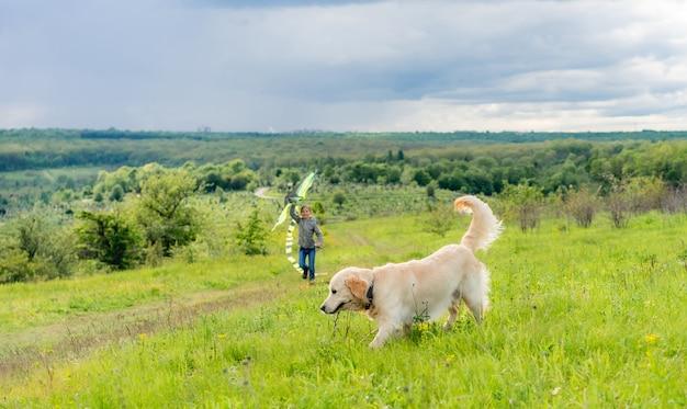 Leuke hond die met stok op het veld loopt