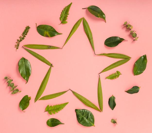 Leuke ster van groene bladeren