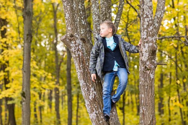 Leuke tienerjongen zittend op een tak van een boom in het herfstpark.