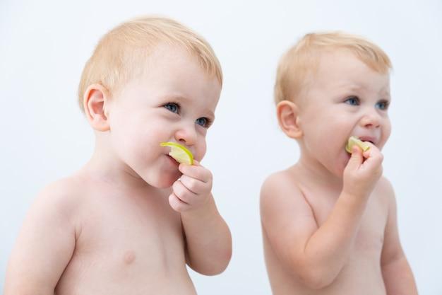 Leuke tweeling de baby die van de jongenspeuter de kalkplakken proeft