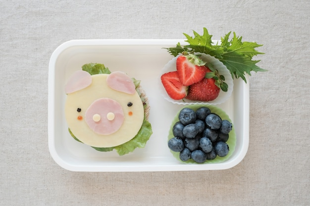 Leuke varkenslunchdoos, leuke voedselkunst voor kinderen, jaar van varkensvoer