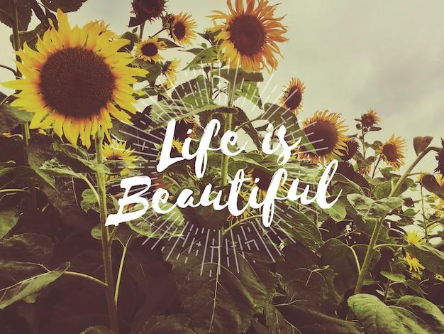 Leven leef liefde geniet van positiviteit dankbare passie Gratis Foto