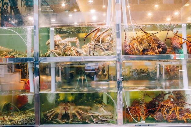 Leven zee vis in etalage