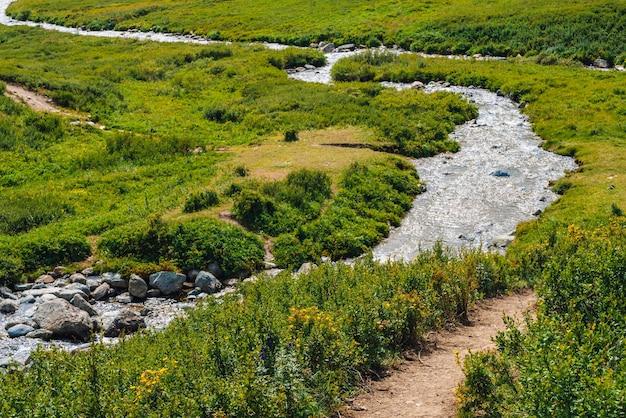 Levendig alpien landschap met samenvloeiing van twee bergkreek in groene vallei