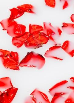 Levendige rode bloembloemblaadjes die op helder stroomversnelling drijven