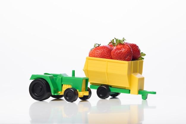 Levering van biologische aardbeien uit eigen tuin. verse aardbeien van de fabrikant.