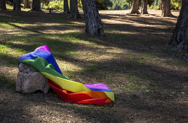 Lgbt-vlag in het veld. trots. vrijheidsconcept