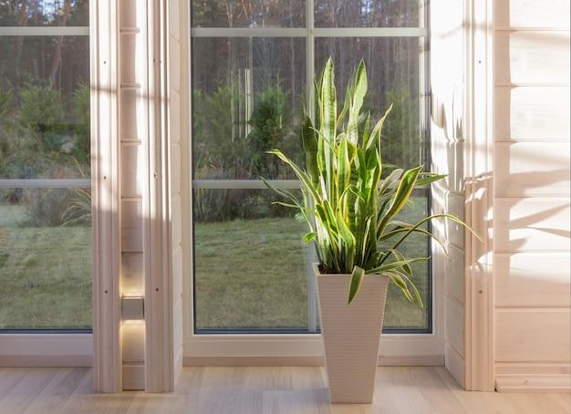 Licht interieur van de kamer in houten huis met een groot raam met uitzicht op de binnenplaats van de herfst. huis en tuin, herfstconcept.