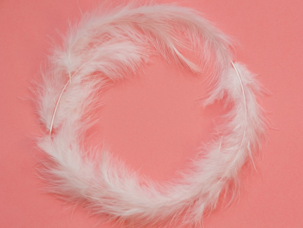 Licht witte veren op een roze achtergrond