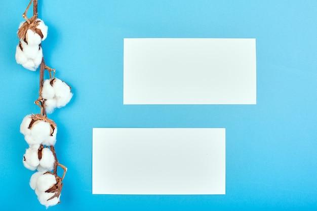 Lichtblauwe achtergrond met tak van katoen bloem. katoen en blanco papier. plat leggen, kopie ruimte.