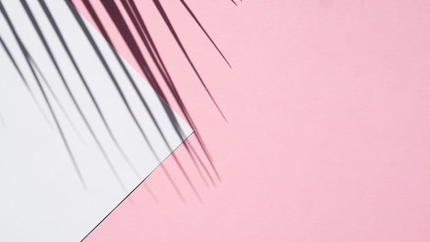 Lichtblauwe spatie op een roze achtergrond met een bladschaduw