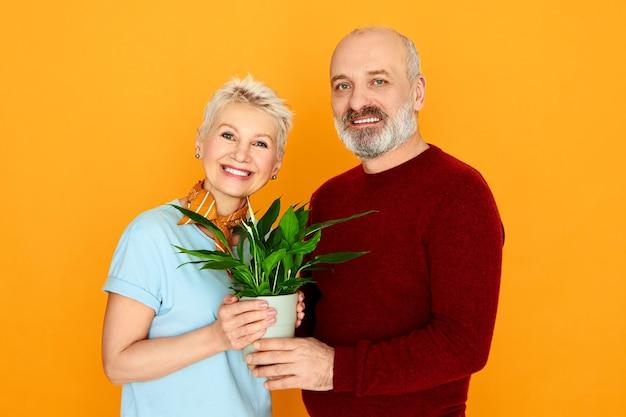 Liefde, familie en relaties concept. studio foto van gelukkige middelbare leeftijd paar kortharige vrouw en bebaarde man die zich voordeed op gele muur met plant pot, nieuwe spullen kopen terwijl ze samen intrekken