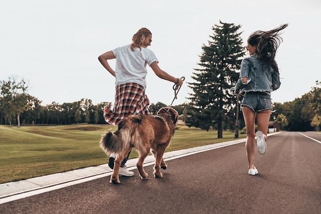 Liefde maakt alles mogelijk. achteraanzicht van de volledige lengte van een mooi jong stel dat met hun hond rent terwijl ze tijd buitenshuis doorbrengen