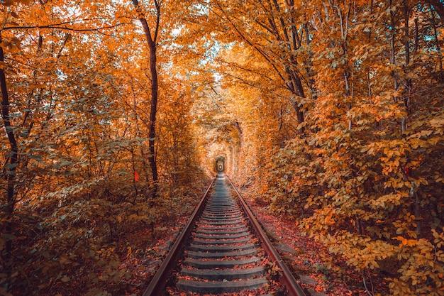 Liefdetunnel in de herfst