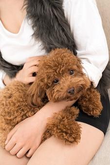Lieve puppy
