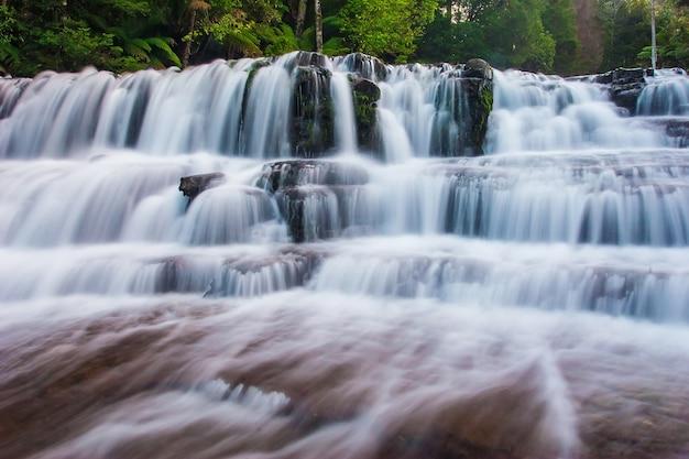 Liffey falls state reserve in het midlands-gebied van tasmania, australië.
