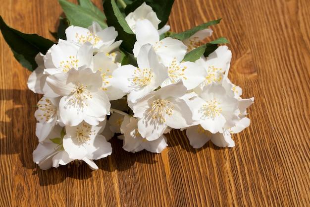 Liggend op een houten plank een paar witte jasmijnbloemen met een sterke geur voor in een boeket als cadeau