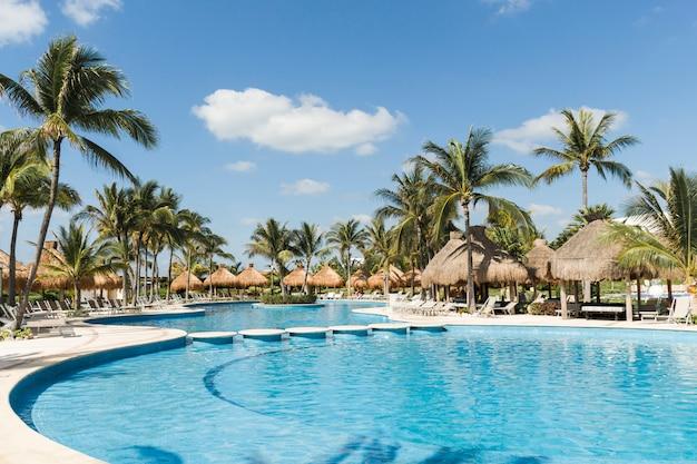 Ligstoelen bij palmen en zwembad in zonnige dag
