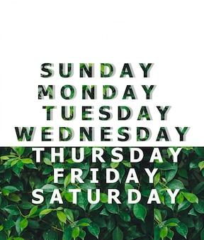 Lijst van dag ontworpen op een natuurlijke groene bladachtergrond, dagelijks ontwerp