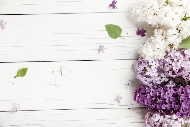 Lila bloemen achtergrond, close-up