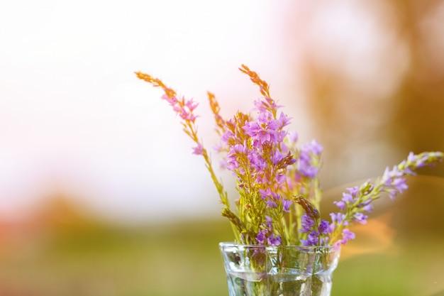 Lila bloemen in een vaas close-up op een natuurlijke achtergrond