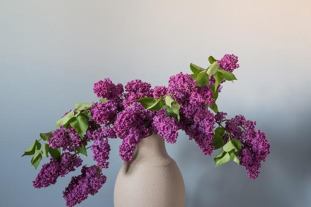 Lila bloemen in terracotta vaas op achtergrondmuur